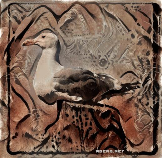 seagull cave paint deep dream