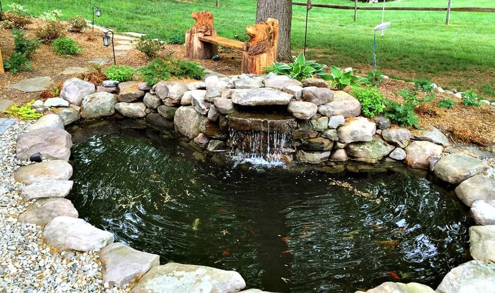 Why Koi Ponds Are So Popular in Sydney on Koi Ponds Ideas  id=74519