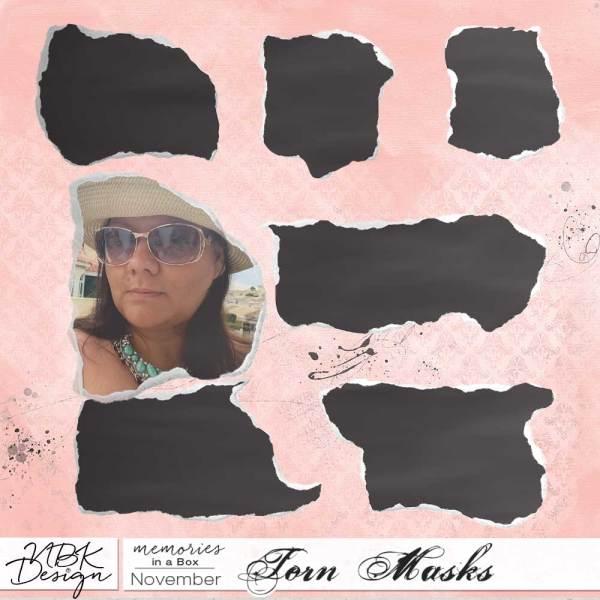 nbk_PL2015_11_masks