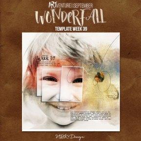nbk-WONDERFALL-2017-TP-39