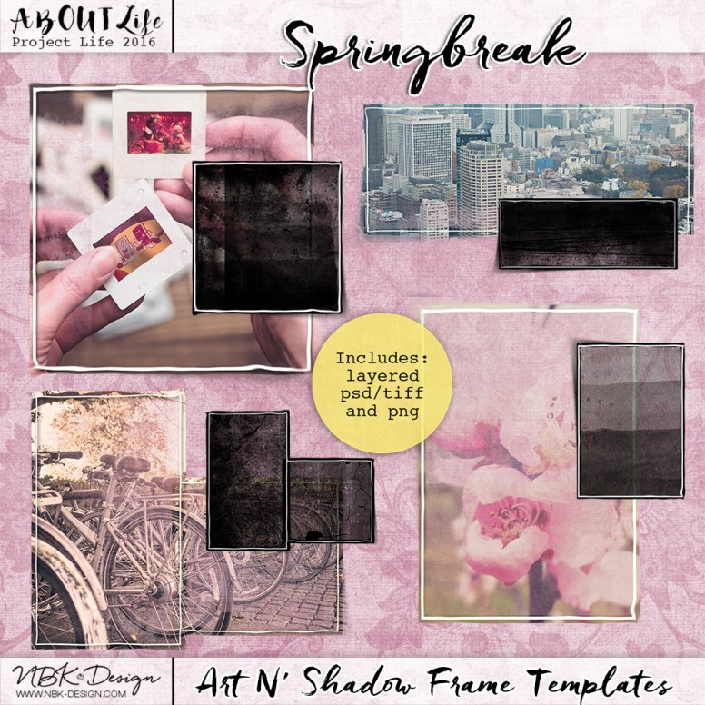 nbk-04-springbreak-artN'shadow-Frame