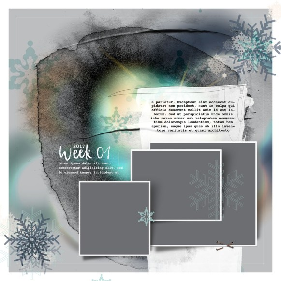 nbk-WINTERBLUES-TP-01-17_Det