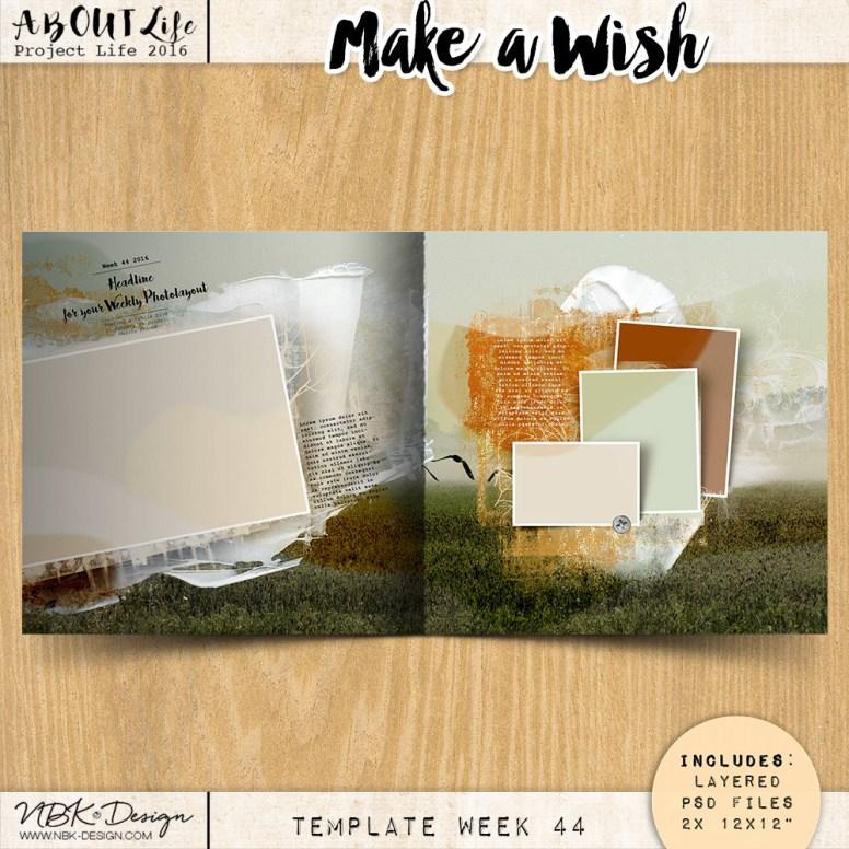 nbk-make-a-wish-TP44