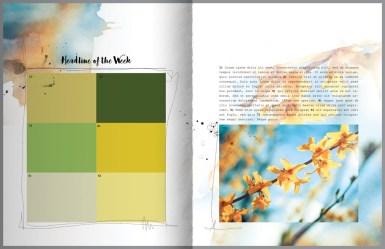 nbk-wildflowers-mini-storybook-10-112