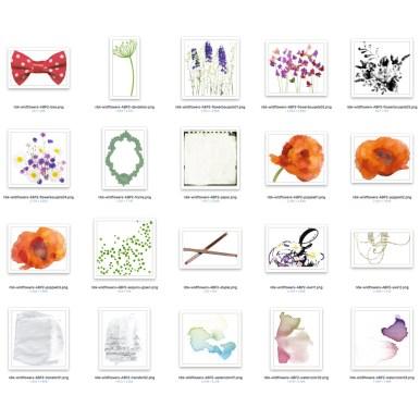 nbk_Wildflowers-ABP2-800-det