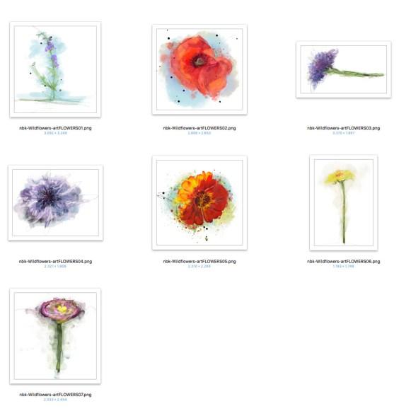 nbk_Wildflowers-artflowers-800-det
