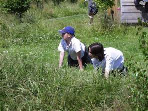 School- shallow mounding provides hiding places