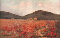 Poppyland- view from Overstrand Church, an old postcard