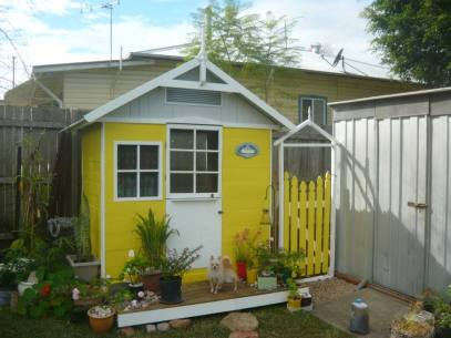 Shed plus!