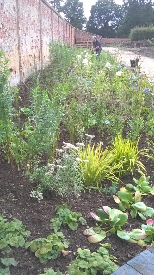 Weeding nearly done...