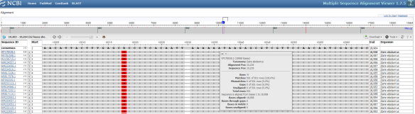 """Figure 6. An Example Multiple Sequence Alignment. A multiple sequence alignment of the results for the example Ebolavirus sequence in Figure 2 is shown. In the top-right of the interface users can select the """"Download"""" button to save the results in FASTA format. Additionally, next to the download button, the """"Tools"""" button allows users to adjust the coloring scheme used."""