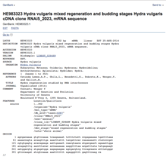 "Sample EST record displayed in new default ""GenBank"" format for ESTs and GSSs"