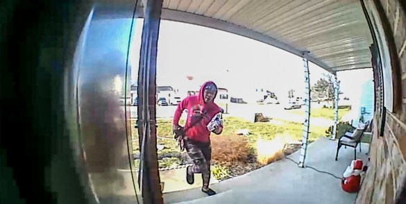 Package Thief copy