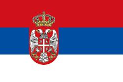 ネイティブキャンプセルビア人講師