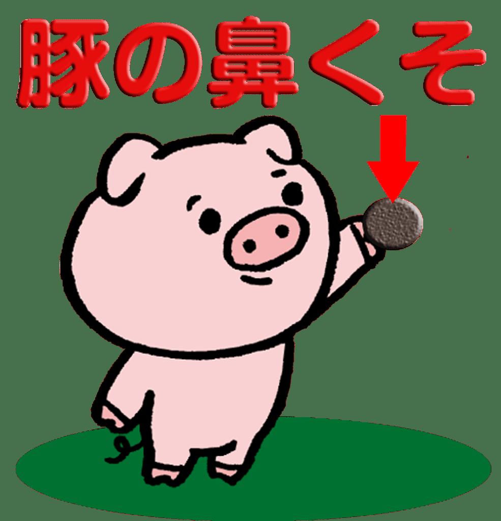 フィリピンで食べられている・豚の鼻くそ