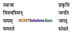 NCERT Solutions for Class 8 Sanskrit Chapter 7 भारतजनताऽहम् Q5.2