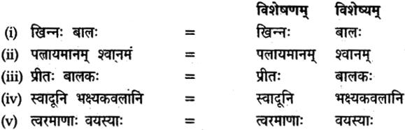 NCERT Solutions for Class 9 Sanskrit Shemushi Chapter 6 भ्रान्तो बालः 5