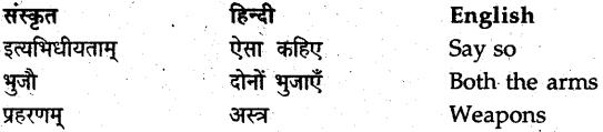 NCERT Solutions for Class 9 Sanskrit Shemushi Chapter 7 प्रत्यभिज्ञानम् 6