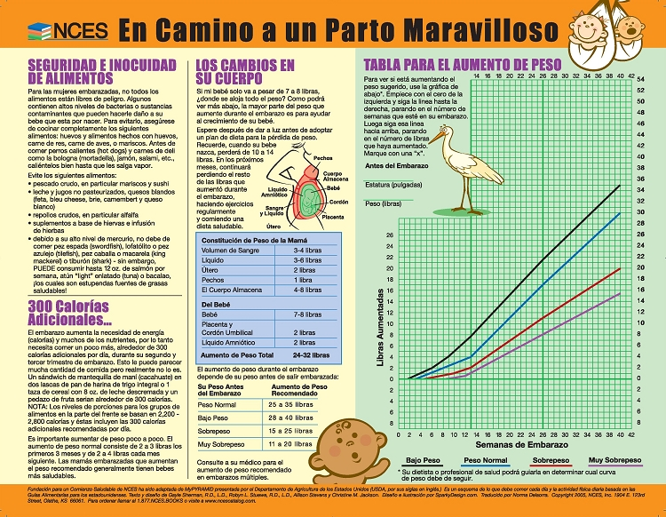 Spanish Nces Foundation For A Healthy Start