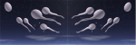 sperm in space