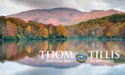 Senator Tillis Chairs Hearing on TBI/Concussions
