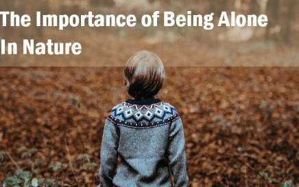 The Importance of Being Alone in Nature-childhood by nature
