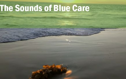 the sounds of blue care_dr john la puma