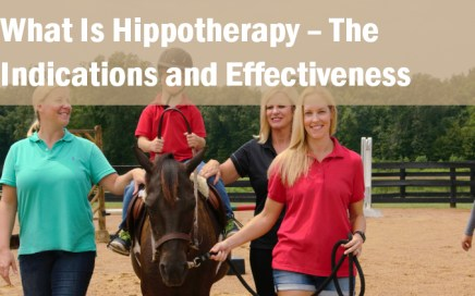 what is hippotherapy the indications and effectiveness