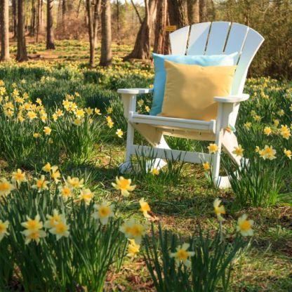 srar1cd-pillows-daffodils-x.jpg
