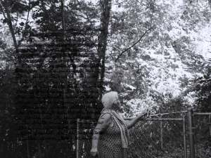 Grandmother holding onto a chainlink fence