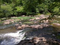 Waterfall on Eno River