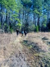 Break in the Trail