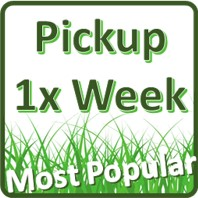 1x per week (4 visits per month)