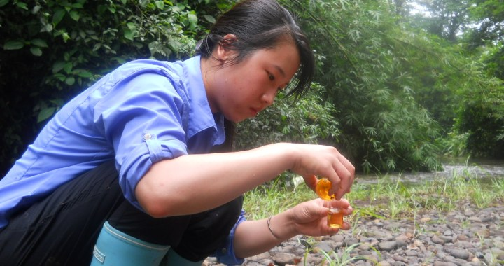 This photograph was submitted by LaRoy Brandt, Assistant Professor of Conservation Biology at Lincoln Memorial University. As part of a tropical rainforest field course at the LaSuerte Biological Field Station in Costa Rica, students participated in both service learning and conducting their own field research projects. Shown here is a student conducting a field titration to determine the amount of dissolved oxygen in Rio Suerte, information used to inform local villagers about the quality of water in their river. As part of the learning experience, students not only became more familiar with rainforest ecology, but also were able to gain personal ownership in efforts to understand human impacts on the environment.