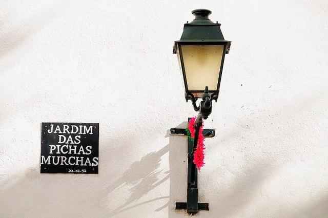 Lisboa insólita: o Jardim das Pichas Murchas