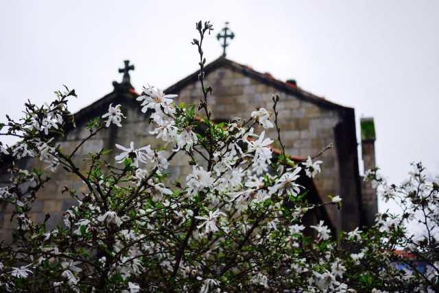 Tem 1500 anos e é a igreja mais antiga do Porto