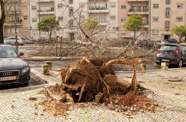Mau Tempo e os estragos em Portugal (fotos)