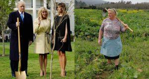 Donald Trump é uma velha galega?