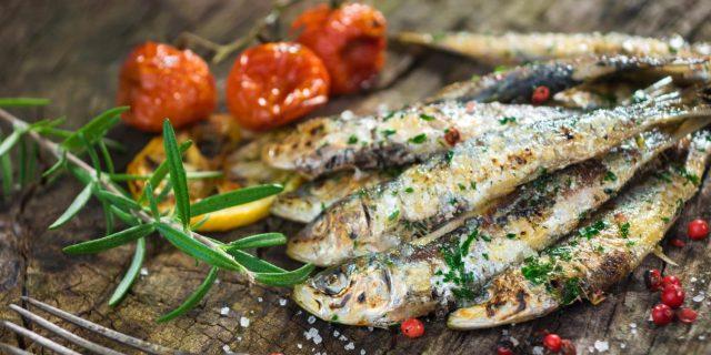 Portugal: qual a melhor sardinha, a do Sul ou do Norte?