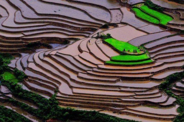 Mù Cang Chải, Vietname