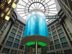 10 dos elevadores mais incríveis do mundo