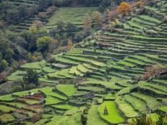 Sistelo: a aldeia portuguesa que nos deixa sem palavras