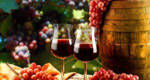 Os dez melhores vinhos tintos