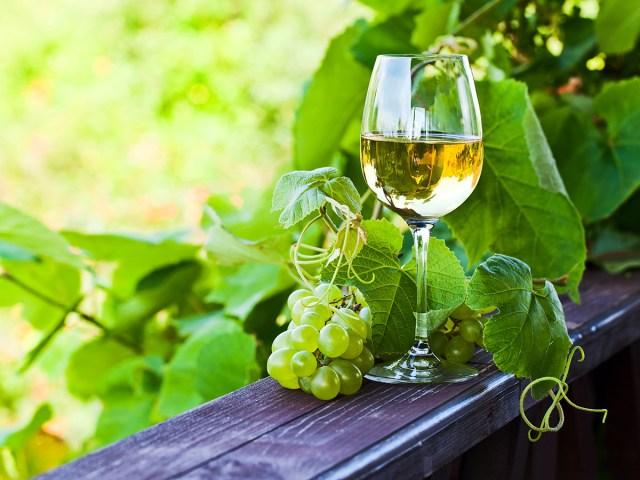 6 dos melhores vinhos brancos