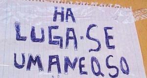 curiosos erros de português