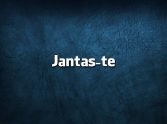 8 erros de português que arruínam