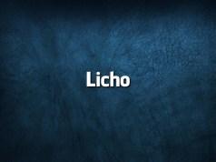 Palavras da língua portuguesa que todos falam