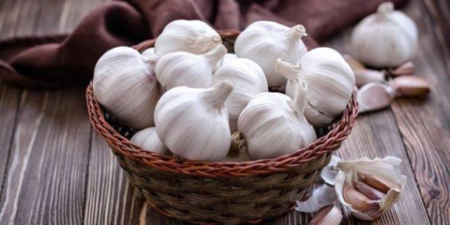 benefícios do gengibre e do alho