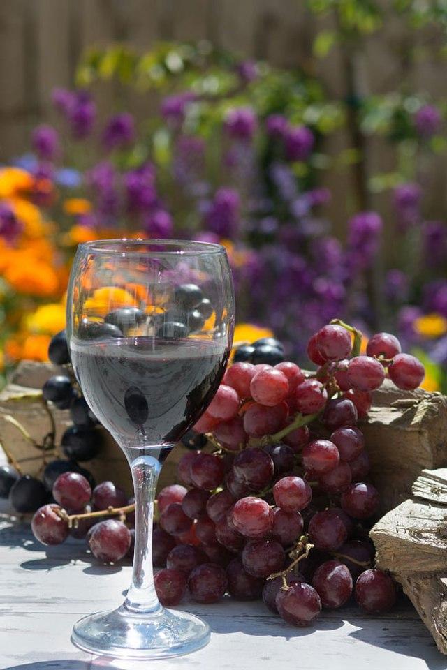 Vinho tinto é benéfico