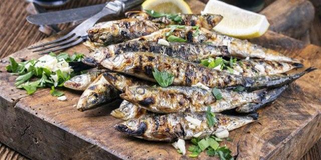 escolher as melhores sardinhas